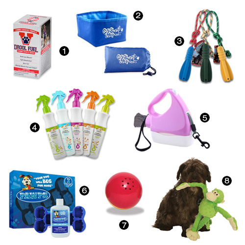 8 Must Have Pet Products for All Pet Owner