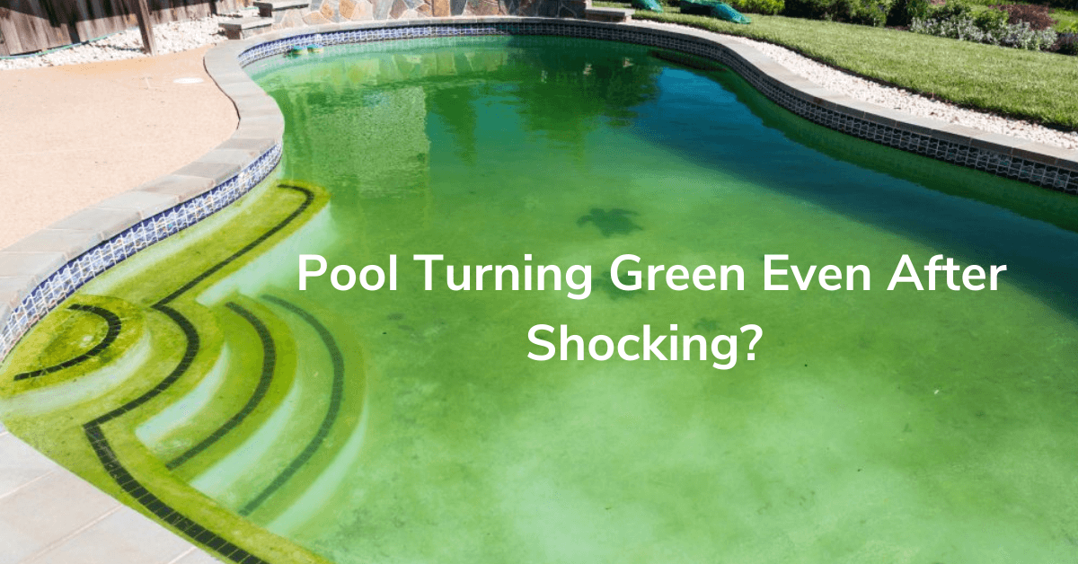 Pool Is Turning Green Even After Shocking